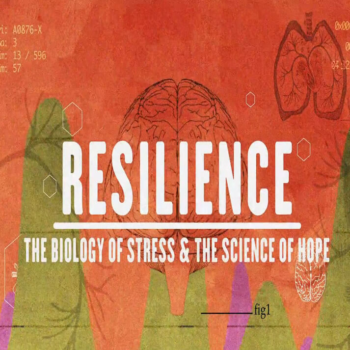 child abuse and resiliance Adversity, maltreatment, and resilience in maltreatment, and resilience in the sample of 943 families was from the longitudinal studies of child abuse.