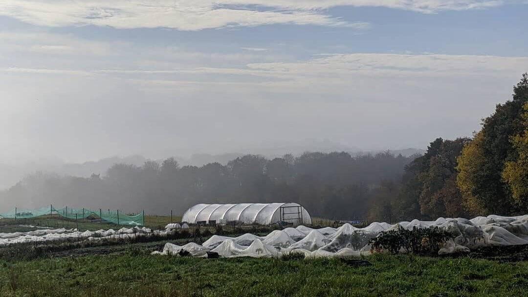 Regather Farm