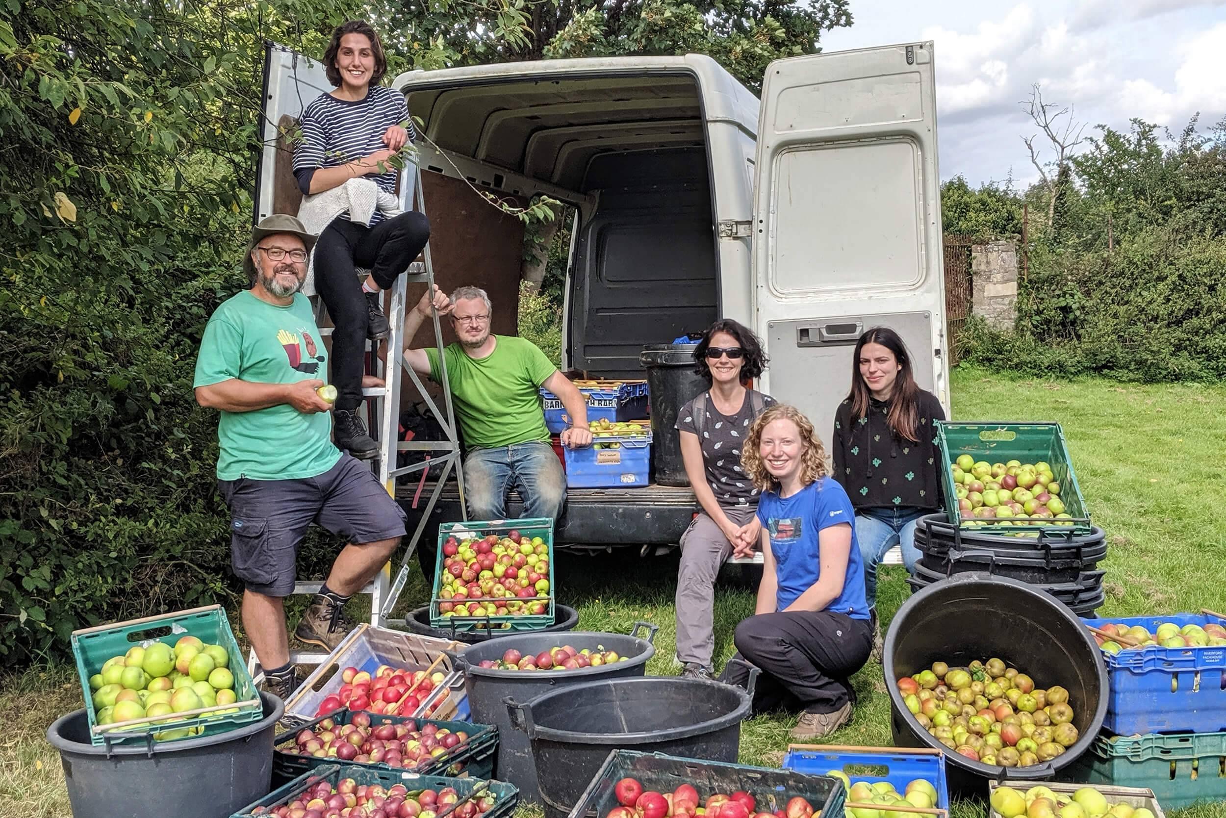Sheffield Apple Harvest - Juice, Regather