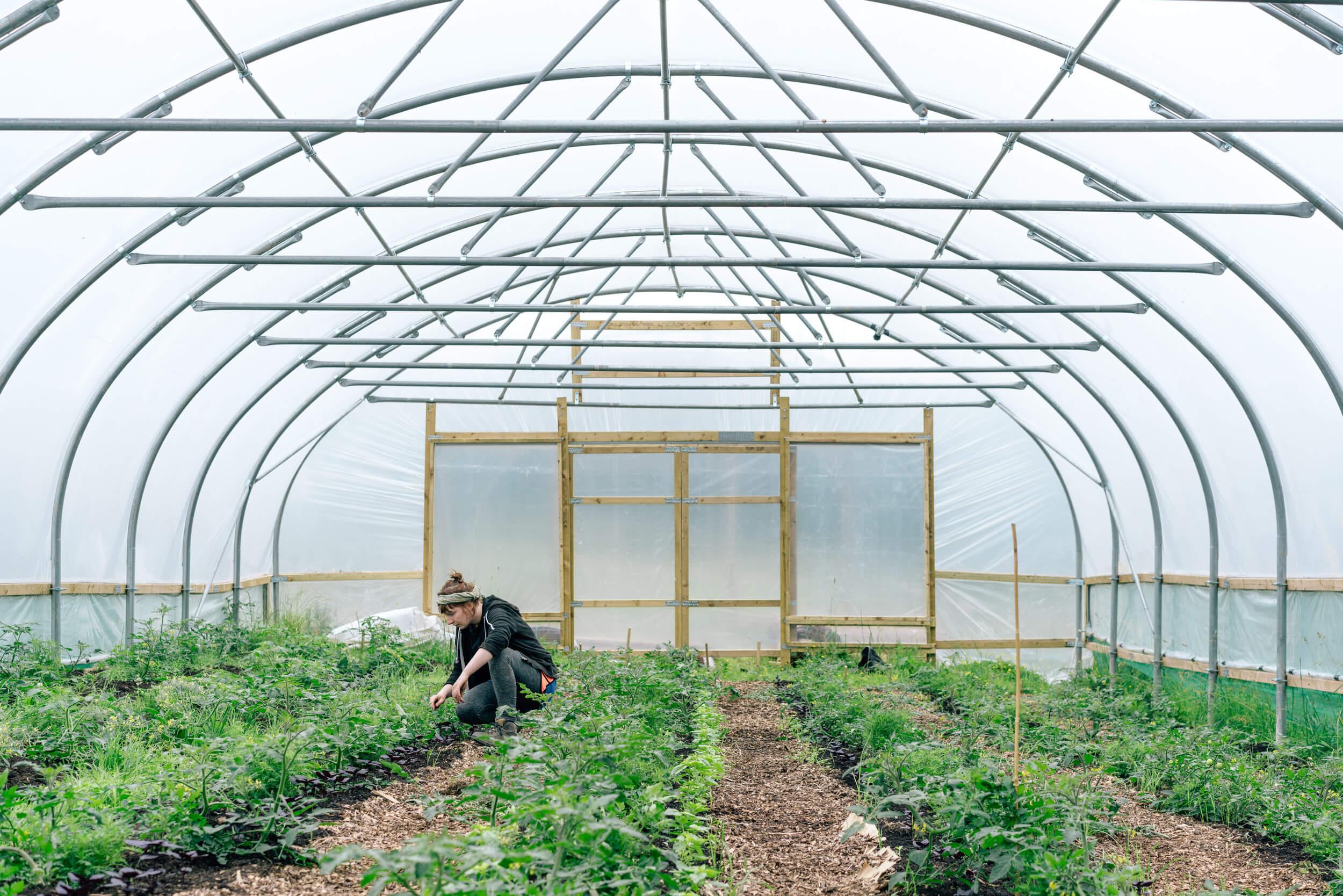Regather Farm - Market Garden